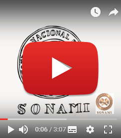 Canal SONAMI