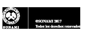 SONAMI :: Sociedad Nacional de Minería