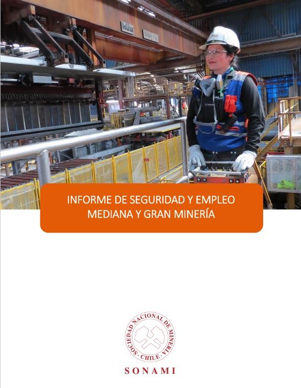 informe_seguridad